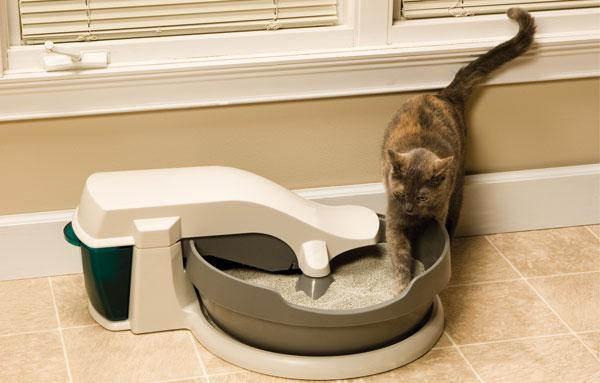 Кошка в автоматическом туалете