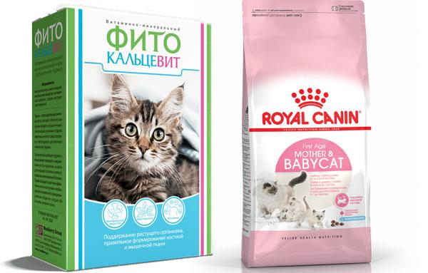 Сухой корм и витамины для кормящих кошек
