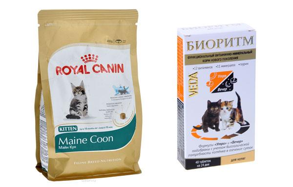 Сухой корм и витамины для котят породы мейн-кун