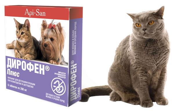 Препарат дирофен плюс в таблетках для кошек от глистов
