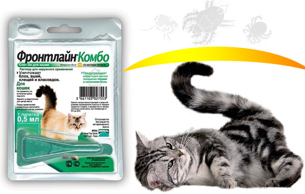 Препарат Фронтлайн комбо для кошек