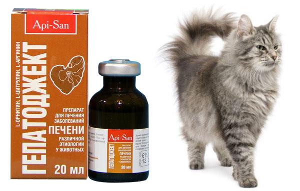 Препарат гепатоджект для кошек