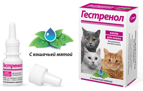 Гестренол для котов инструкция