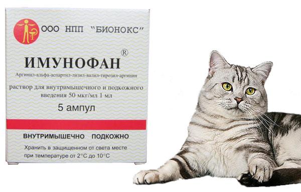 Препарат имунофан для кошек