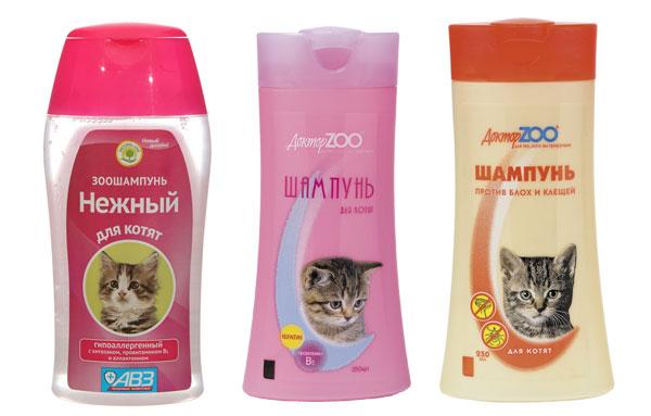 Шамуни для купания котенка
