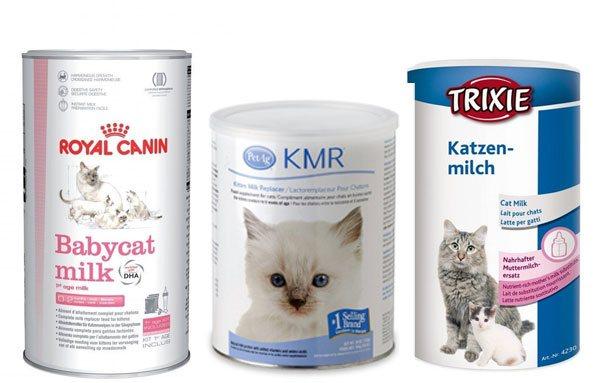 Молочная смесь для котят