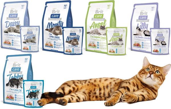 Сухие корма для кошек Брит (Brit Care)