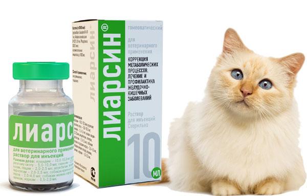 Препарат Лиарсин для кошек