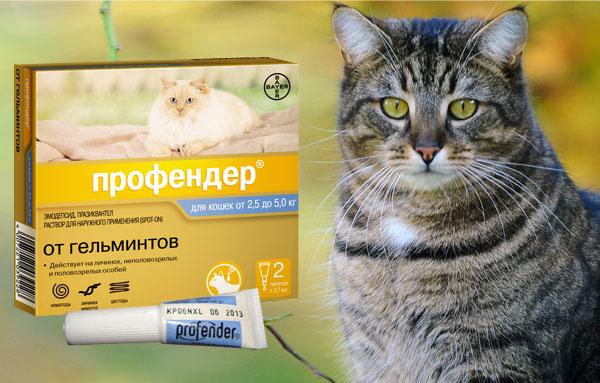 Препарат Профендер для кошек против гельминтов