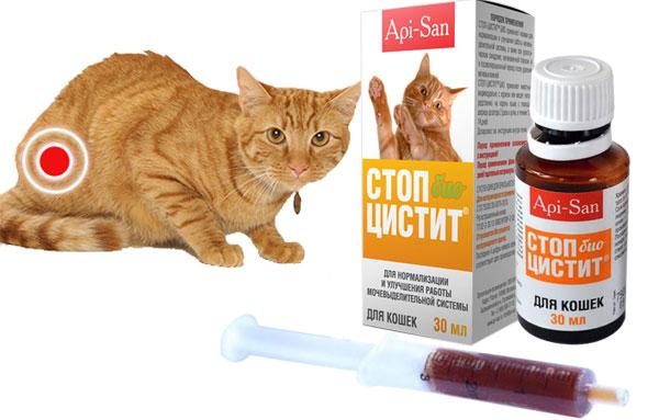 стопцистит для котов инструкция