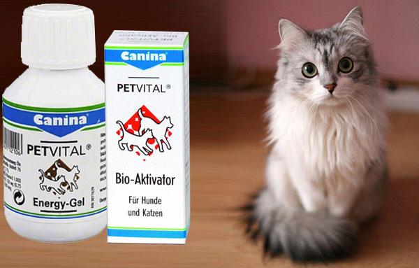 Витамины CANINA - PETVITAL Energy-Gel для кошек