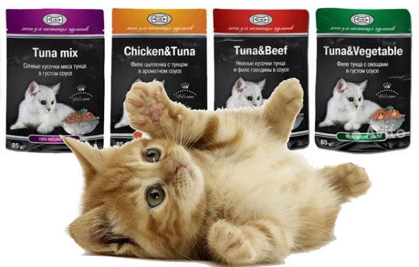 Корм для кошек Gina