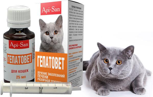 Препарат гепатовет для котов и кошек