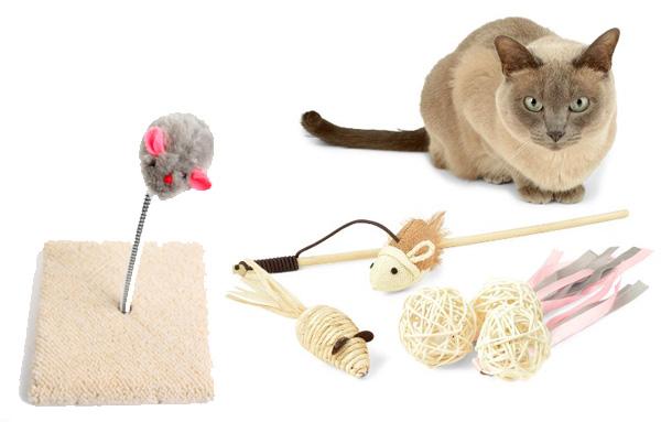 Разнообразие игрушек для кошек
