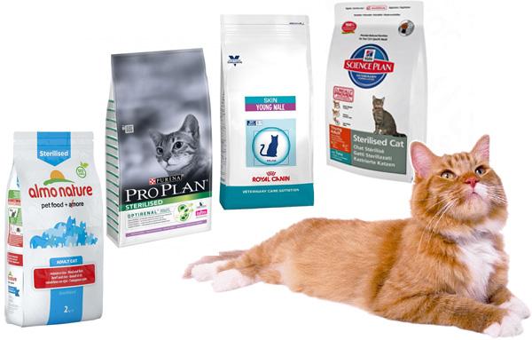 корма, которыми можно кормить кастрированных котов