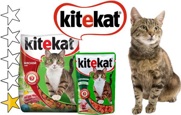 Корм для кошек китикет