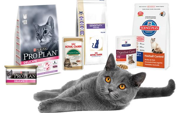 Популярные премиум корма для кошек