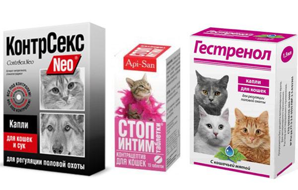 Препараты для кошек во время течки