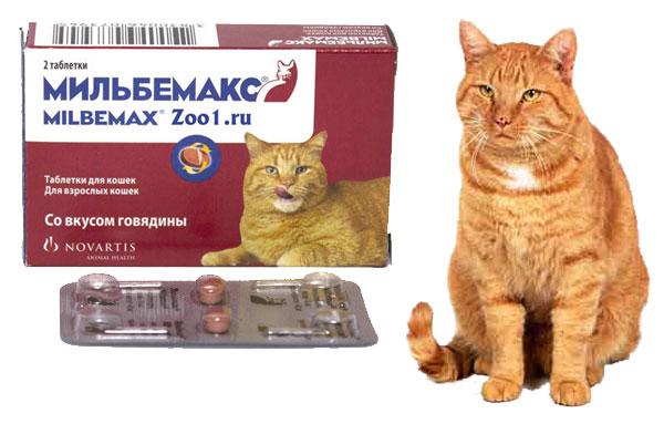 препарат мильбемакс для кошек