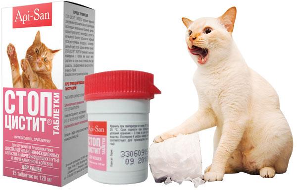Препарат стоп-цистит для кошек против цистита