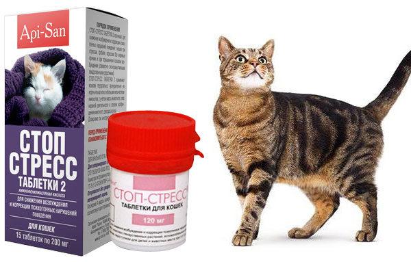 Препарат Стоп-стресс в виде таблеток для кошек