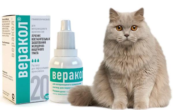 Веракол для кошек в каплях