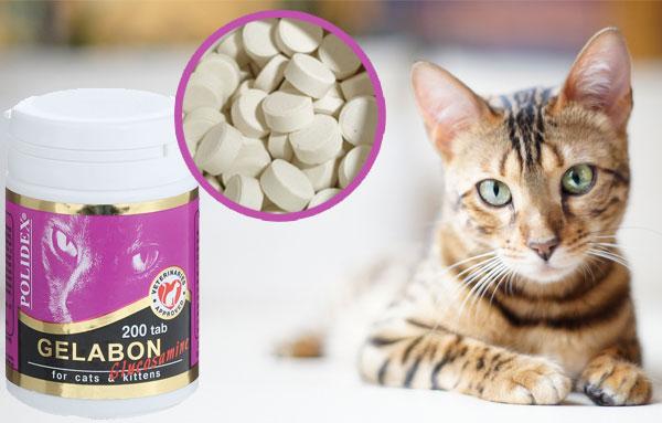 витаминный комплекс POLIDEX «Gelabon plus Glucosamine» для кошек